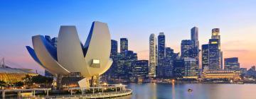 新加坡的酒店