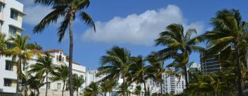 迈阿密海滩的酒店