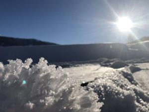 冬天的Ferienwohnung Jehsner