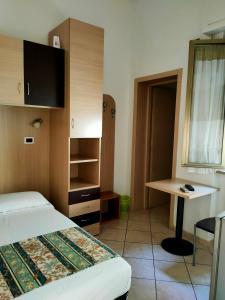 阿菲塔卡马雷易来莎酒店的电视和/或娱乐中心