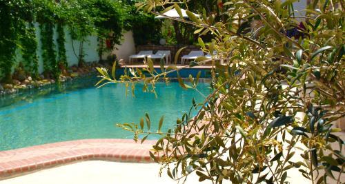 Hotel Pighi内部或周边的泳池