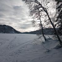 Leilighet med utsikt nær Nordmarka