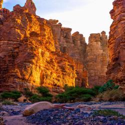 Tabuk Province